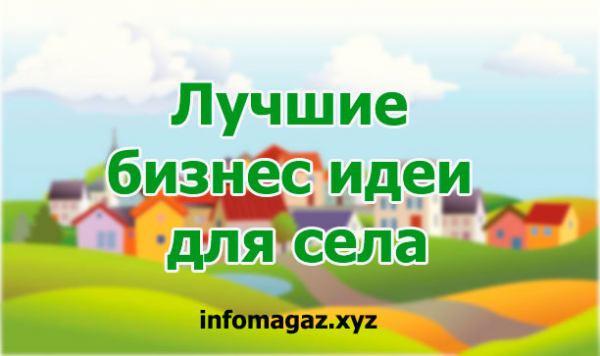 Лучшие-бизнес-идеи-для-села