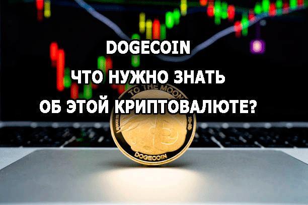 Dogecoin - что нужно знать об этой криптовалюте?